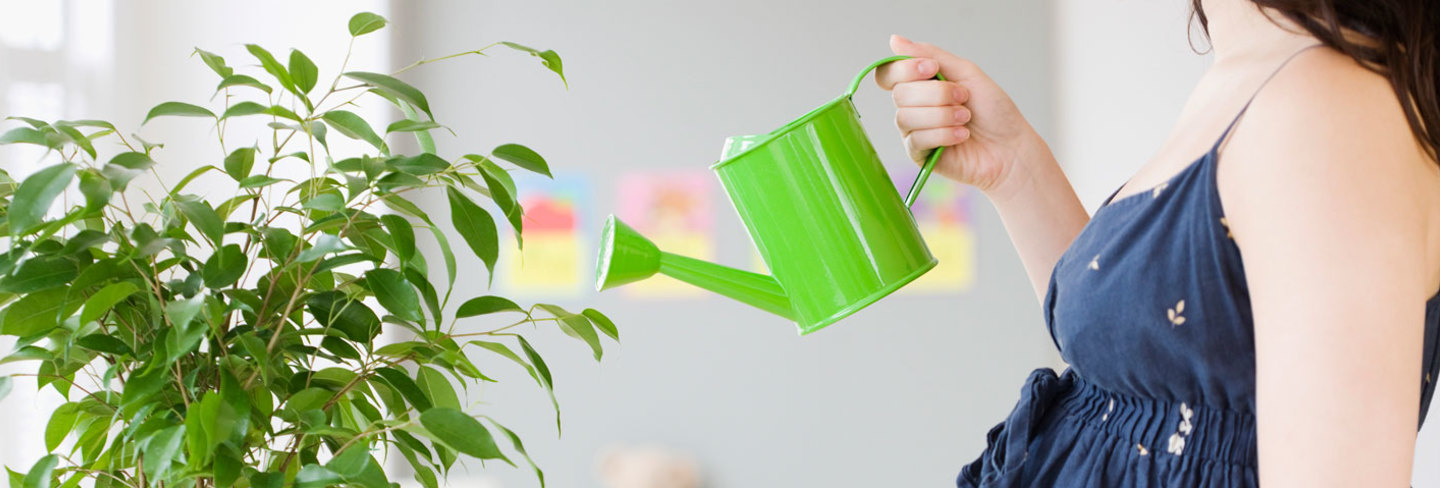 Woman watering plant